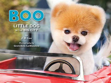 cutest puppies book giveaway win prize packs from boo the world s cutest
