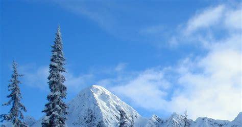 164 best 4 seasons winter in pictures five reasons why winter is the best season