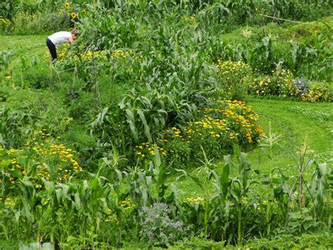botanischer garten pankow herbstfest 2018 bauerngarten angebot 187 bauerngarten