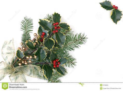 christmas decorations with berries decorations with berries royalty free stock photo image 3709925