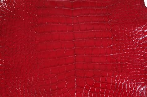 Where To Buy Fabric For Upholstery Alligator Leather Roje Exotic Leather