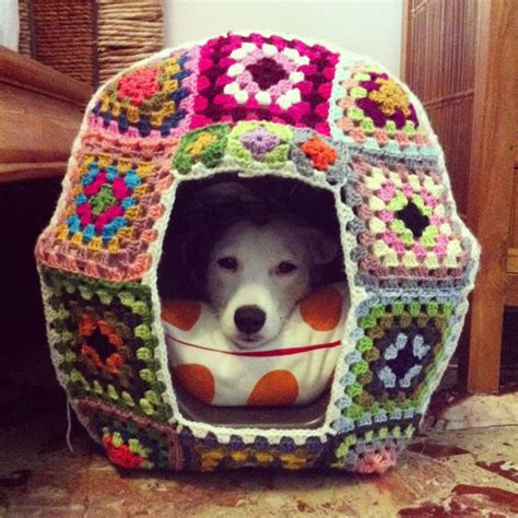 pattern for dog house crazy yarn projects you ve never even dared to try