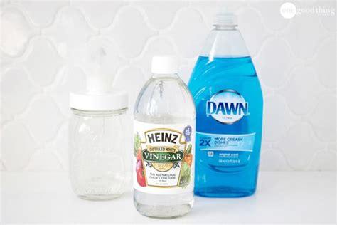 Botol Plastik Spray 250 Cc 3 how to make an easy 2 ingredient killing spray one thing by jillee bloglovin