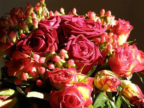 immagine mazzo di fiori foto gratis rosa mazzo di fiori fiori fiore immagine