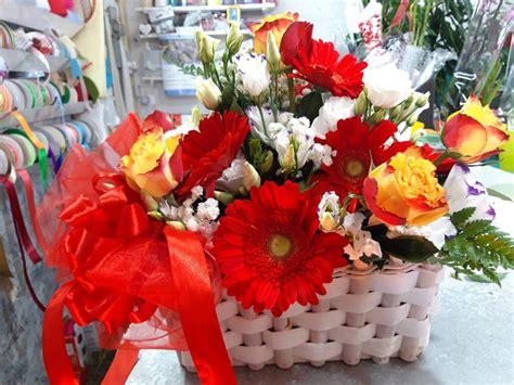 co dei fiori centro commerciale orchidea piante e fiori vena di maida home