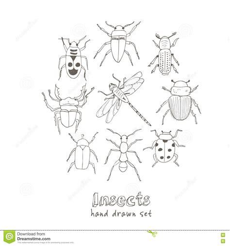 doodle bug bite midge illustrations vector stock images 290