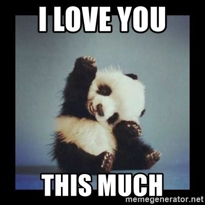 I Love You This Much Meme - i love you this much cute baby panda meme generator