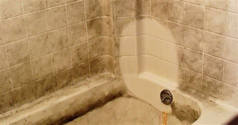 How To Clean Mineral Deposits From Shower Doors N Brite Cleaning Tips How To Clean Water Stains In Showers