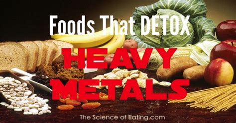 Best Foods For Detoxing Heavy Metals by Detoxing Heavy Metals