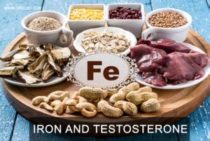 carbohydrates testosterone carbohydrates and testosterone penile enlargement