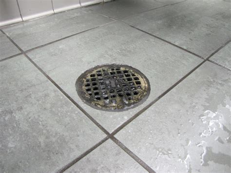 Bathroom Drain by Digest Solids And Eliminate Odors In Grease Traps Septic