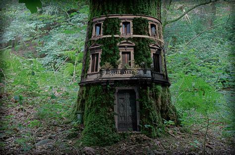 tree house home tree houses modern home exteriors