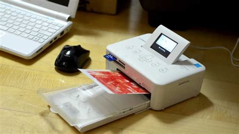 Printer Canon Selphy Cp800 canon selphy cp800 printing