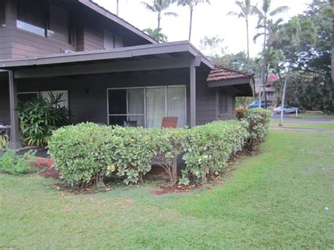 royal lahaina cottages view of from hotel grounds picture of royal