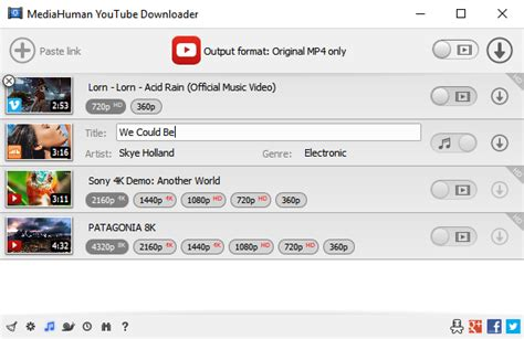 download youtube playlist at once mediahuman youtube downloader feature rich app to