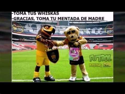 Memes America Pumas - los mejores memes del america vs pumas youtube