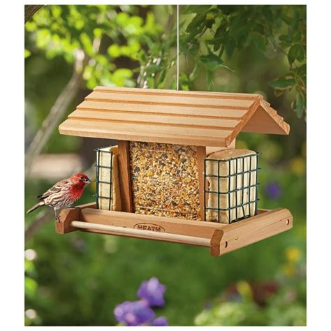 amazing bird feeders bird cages