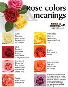 meaning of color of roses colors and meanings www cobornsblog