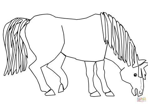 do horses see color blue blue what do you see coloring page free