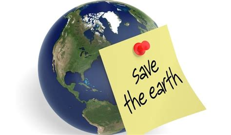 Green Earth Essay by Naturale Live An Eco Friendly And Healthy