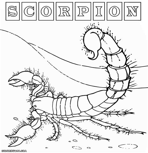 Scorpion Coloring Page Scorpion Coloring Pages Coloring Pages To Download And Print by Scorpion Coloring Page