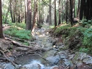 Bed And Breakfast San Marcos Tx Limekiln State Park Big Sur Ca Top Tips Before You Go