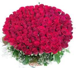 Flowers To Jaipur - jaipur florist jaipur flowers delivery