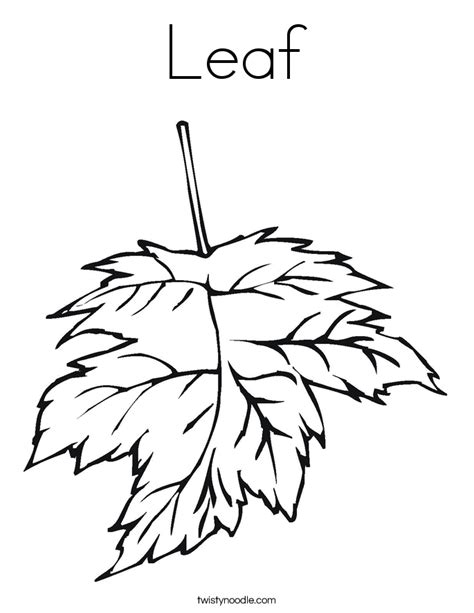 leaf coloring page with leaf color page