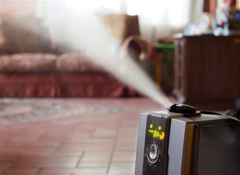 house humidifier reviews  guide