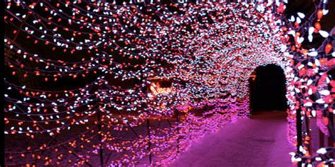 7 st louis holiday light displays you shouldn t miss this