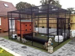 backyard runs cat runs weld mesh animal cages