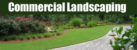 commercial landscaping on island forever green