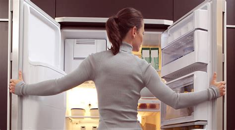 Iglooplay Cool Not Cold by Refrigerator Cool But Not Cold Advanced Appliance Repair