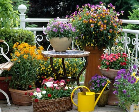 Mixing Pots Urns Of Different Size Shape Can Make For Different Garden Ideas