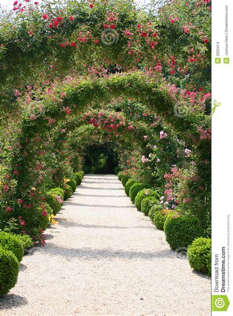backyard landscaping rose garden landscape stock images image 2622414