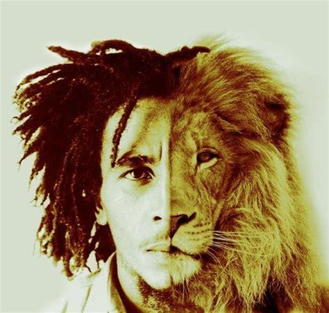 imagenes de leones de zona ganjah lion of judah on tumblr