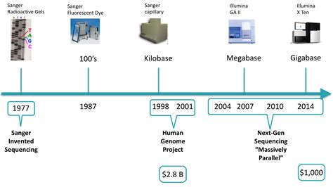 illumina sequencing technology image gallery sequencing technology