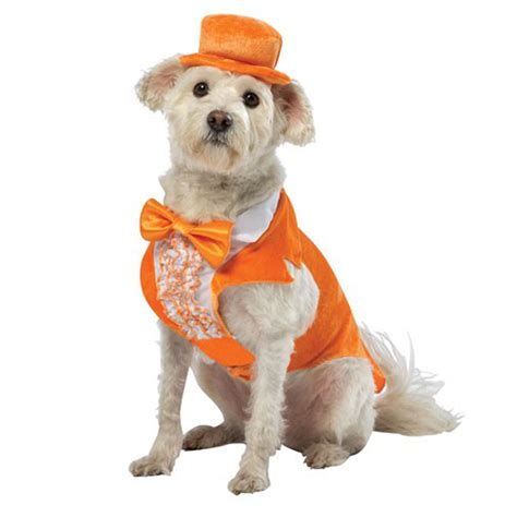 Shirt Dogs Are Not Food dumb and dumber lloyd tux costume orange with same