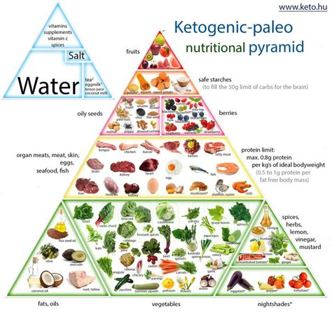 better food pyramid ketogenic foods pyramid search health and
