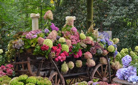 Pin Beautiful Flower Garden Wallpapers Facebook Covers Photo Of Beautiful Flower Gardens