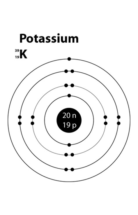 bohr diagram for potassium simple atomic structure of potassium unlabelled
