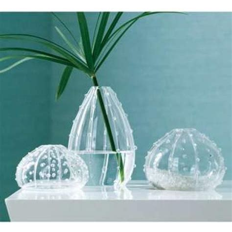 Sea Urchin Vase by Sea Urchin Glass Vase Set Decor Nautical Blown Three