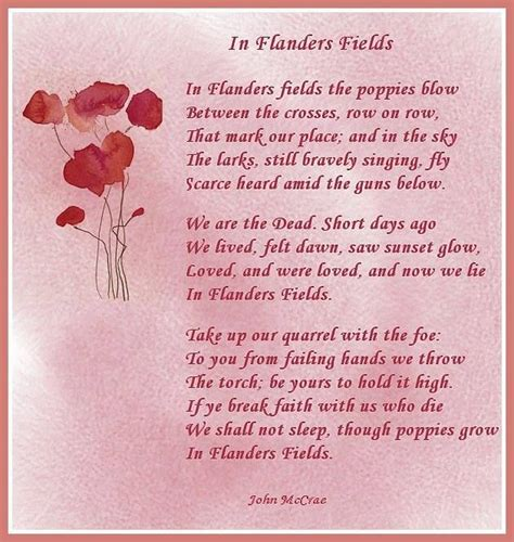 printable version of flanders fields 25 best remembrance day crafts images on pinterest diy