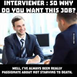 Job Interview Meme - the funny side of job interviews 21 pics