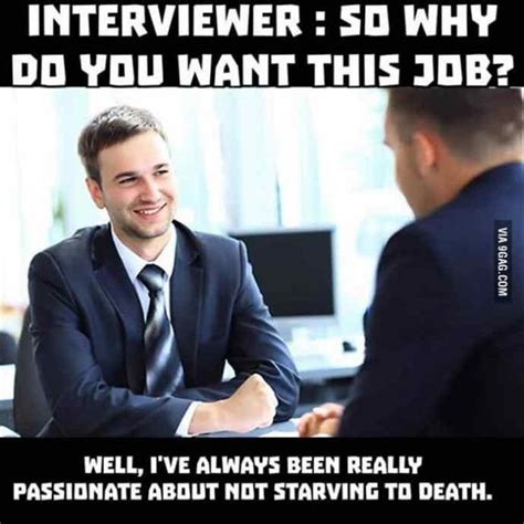 Employment Meme - the funny side of job interviews 21 pics