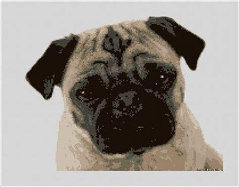pug needlepoint dogs needlepoint kits needlepaint