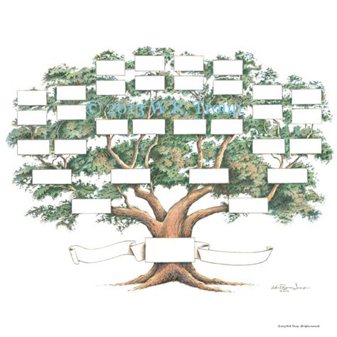 free printable family tree for scrapbook family tree scrapbook chart 12x12 inch 5 6 generations