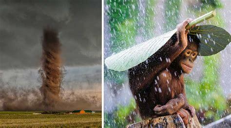 imágenes impactantes premiadas por national geographic 17 fotos premiadas por national geographic 2015 taringa