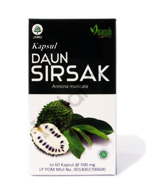 Herbal Daun Sirsak graviola soursop annona muricata 100 herbs daun sirsak inayah 60 caps for cancer