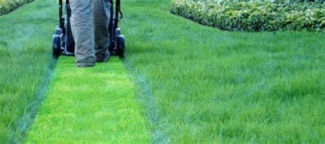 professione giardiniere corso di qualifica giardiniere